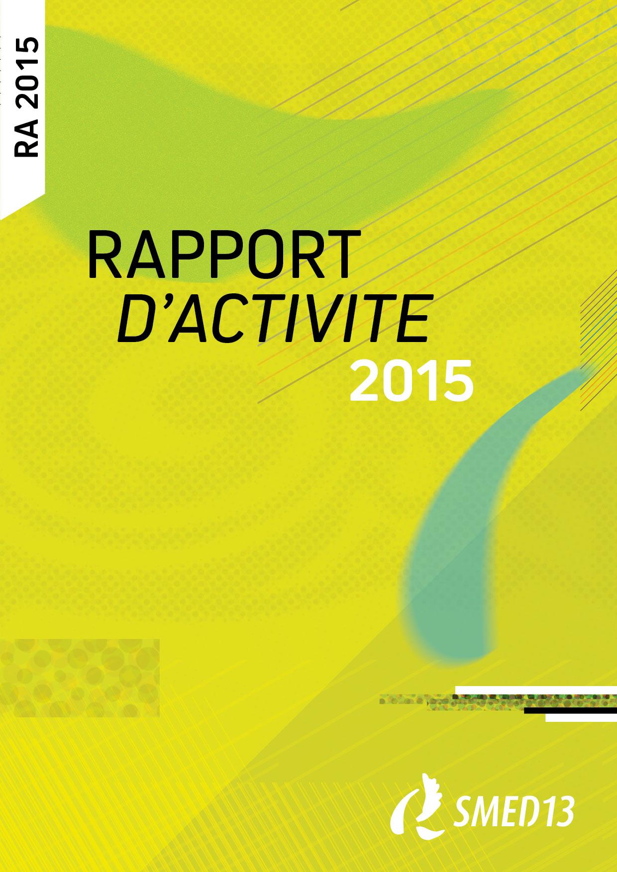 SMED13 - RAPPORT D'ACTIVITE 2015 (2016)